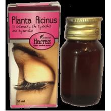 Смесь натуральных масел для роста ресниц и бровей Planta Ricinus