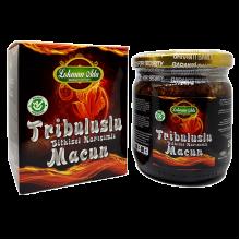 TRIBULUSLU MACUN - ПАСТА ТРИБУЛУС (230гр)